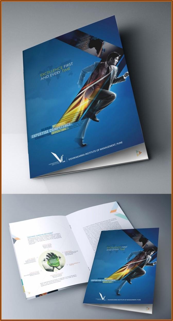 Best Brochure Design Inspiration