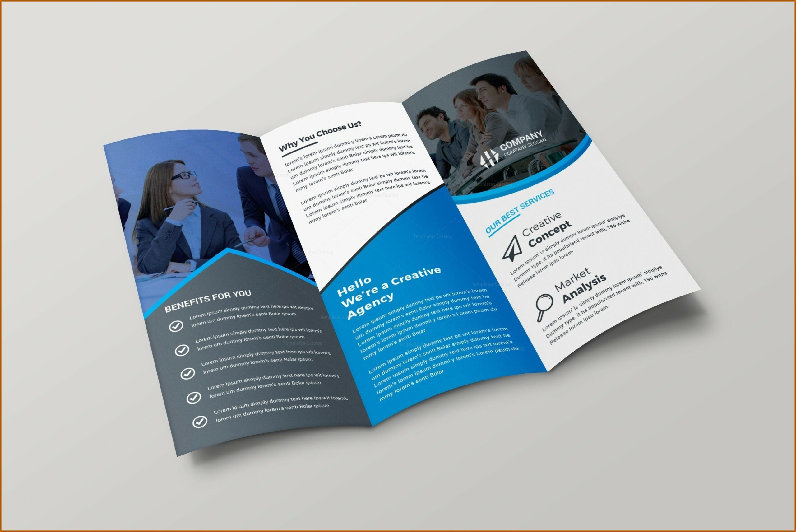 Best Tri Fold Brochure Design Inspiration