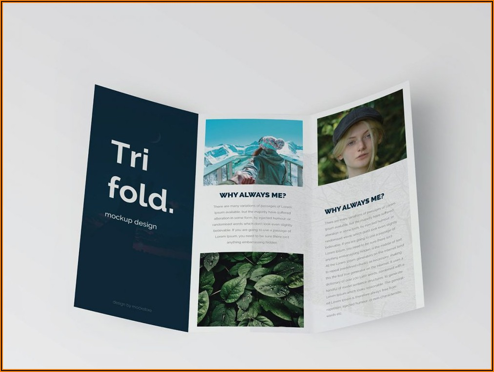 Tri Fold Dl Brochure Dimensions
