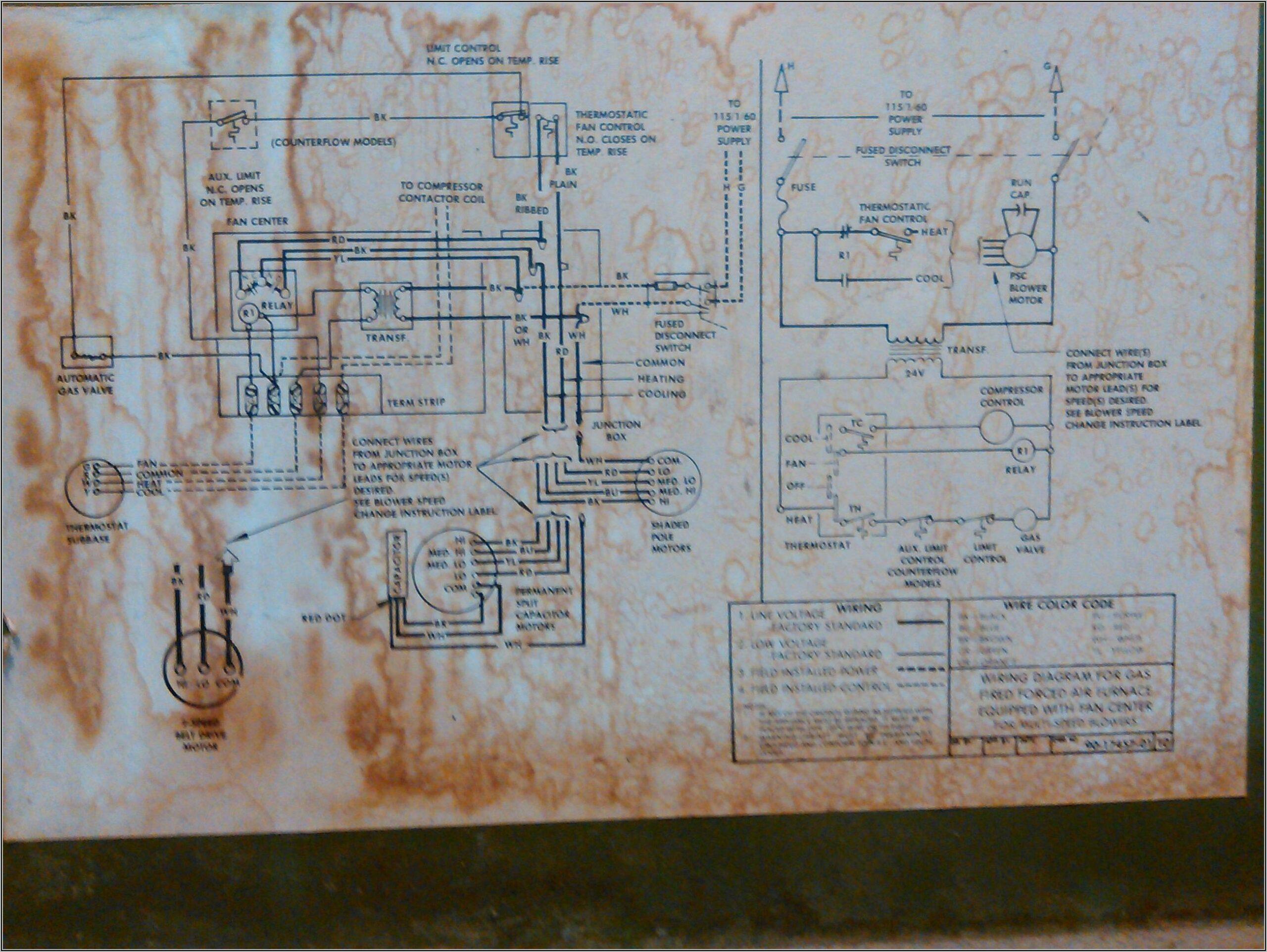 Vigo Electrical Wiring Diagram Pdf