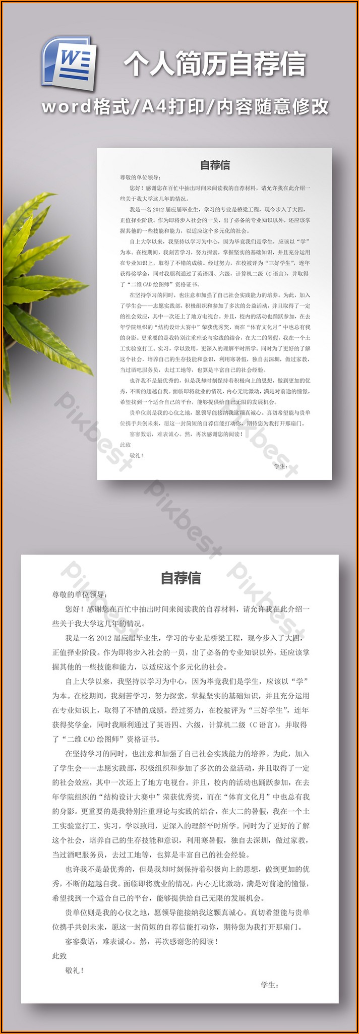 Cv Sample Word Doc Free Download