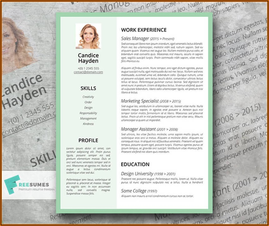 Resume Templates For Machinist