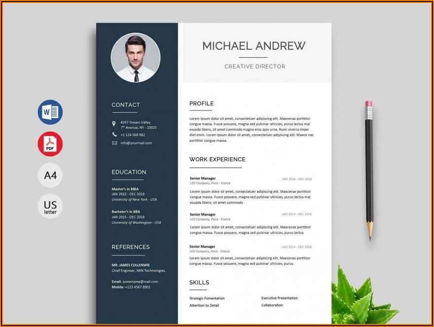 Resume Templates For Word Download