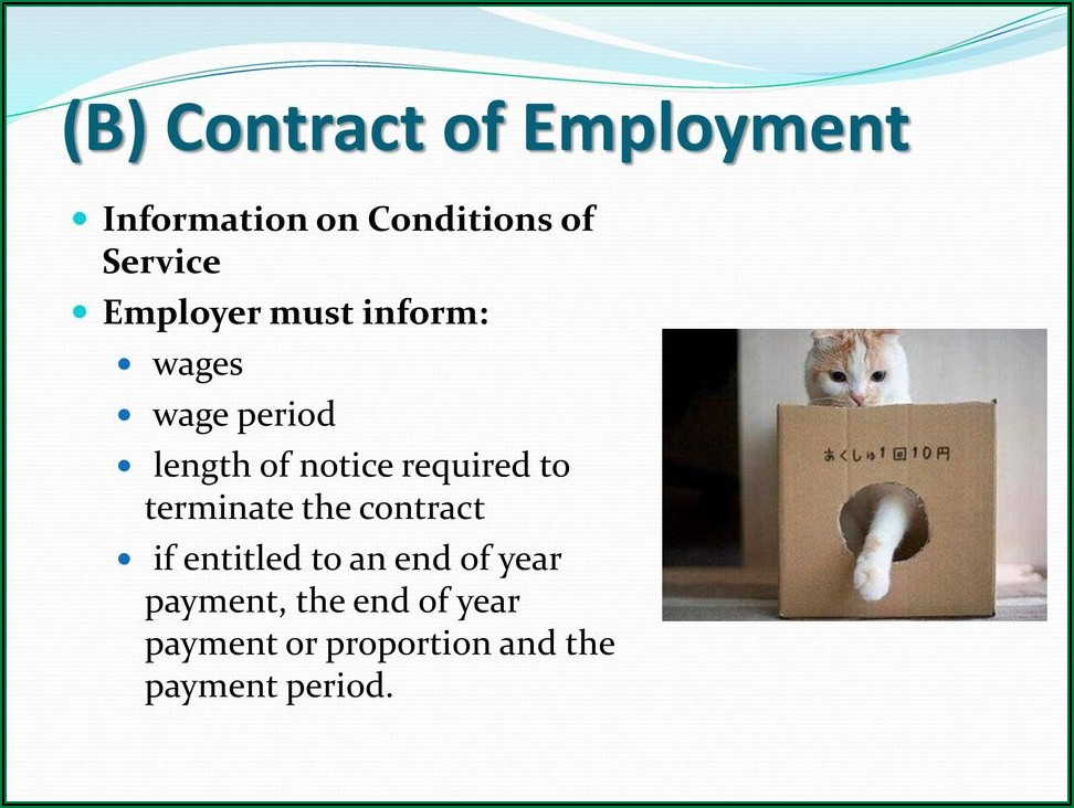 Sample Letter Of Termination Of Employment Contract Initiated By Fdh