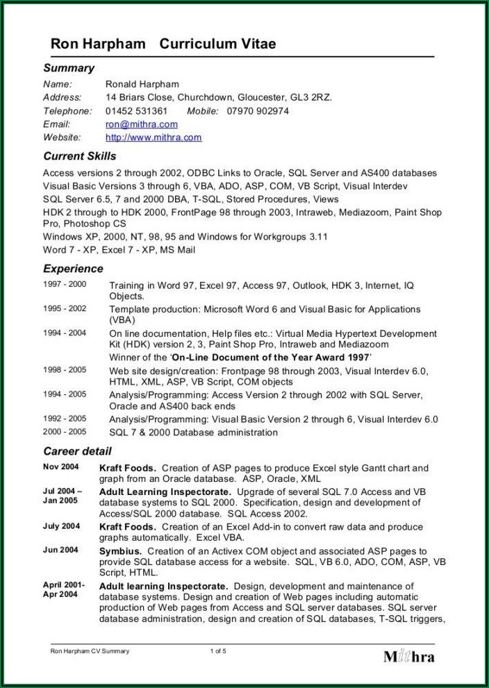 Youth Minister Resume Sample