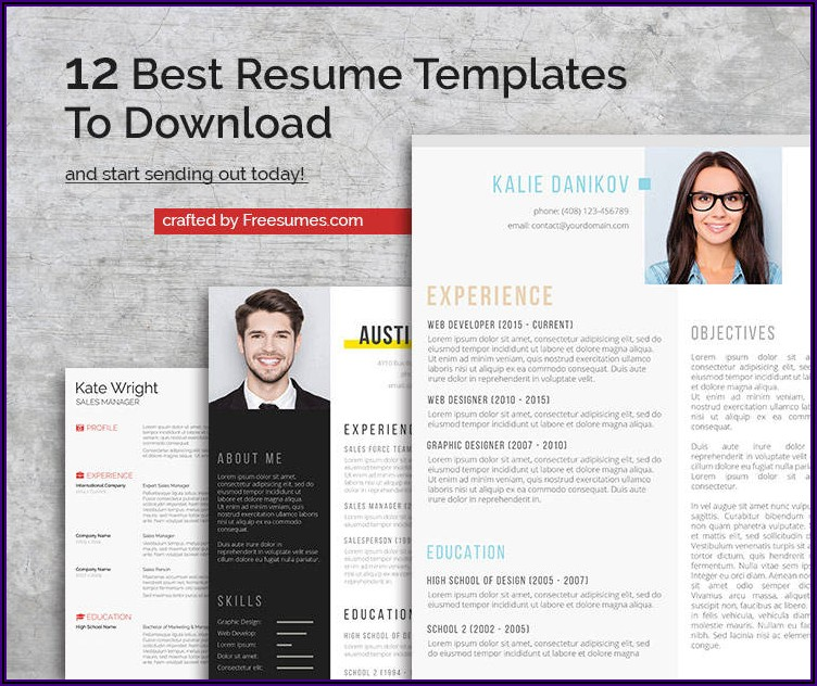 Attractive Resume Templates Free Download For Freshers