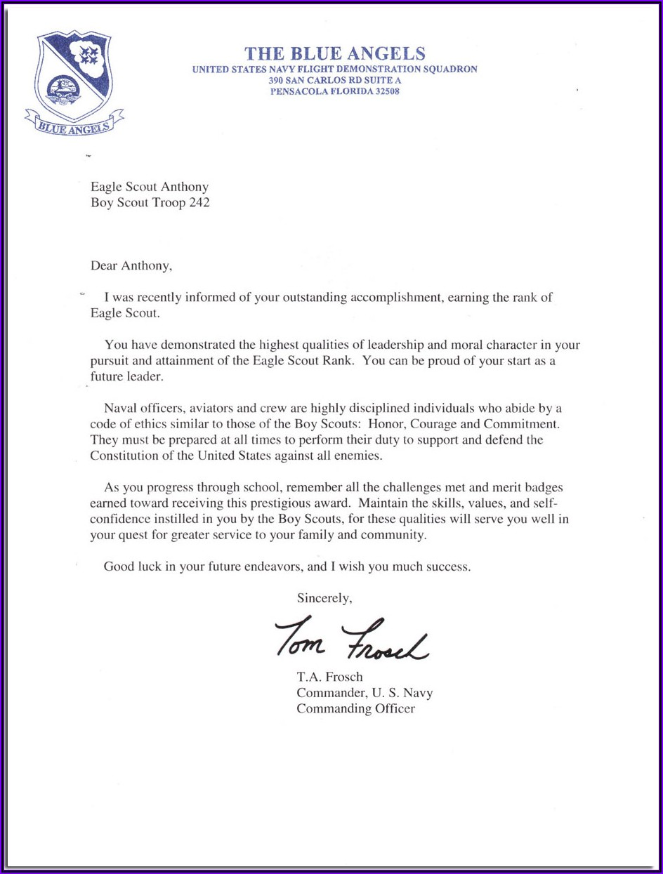 Eagle Scout Letter Of Reference Example