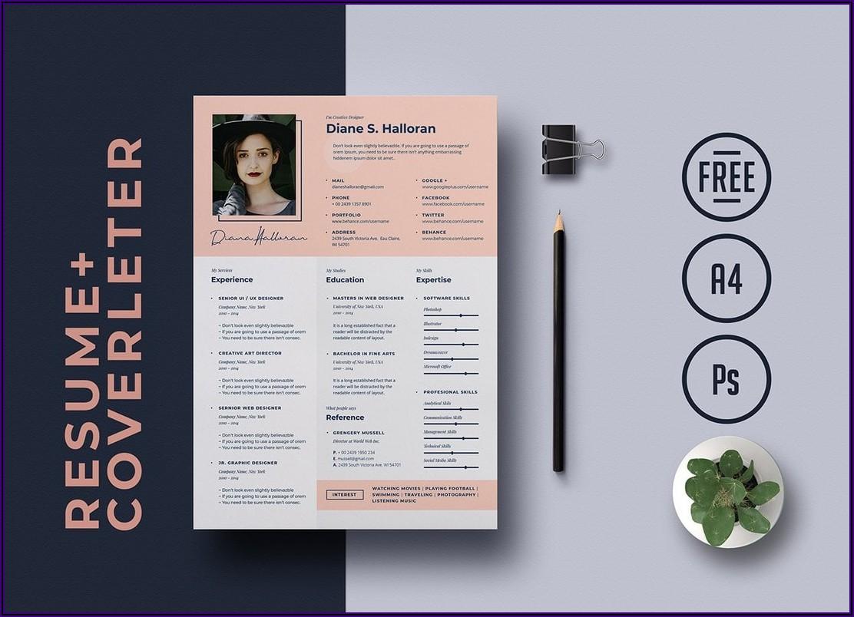 Free Download Creative Resume Templates Microsoft Word