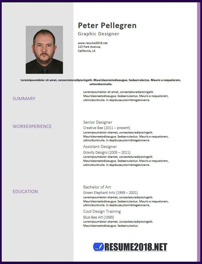 Free Download Word Resume Templates 2018