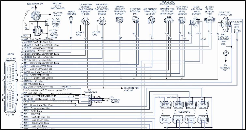 Gibson Les Paul 50s Wiring Diagram