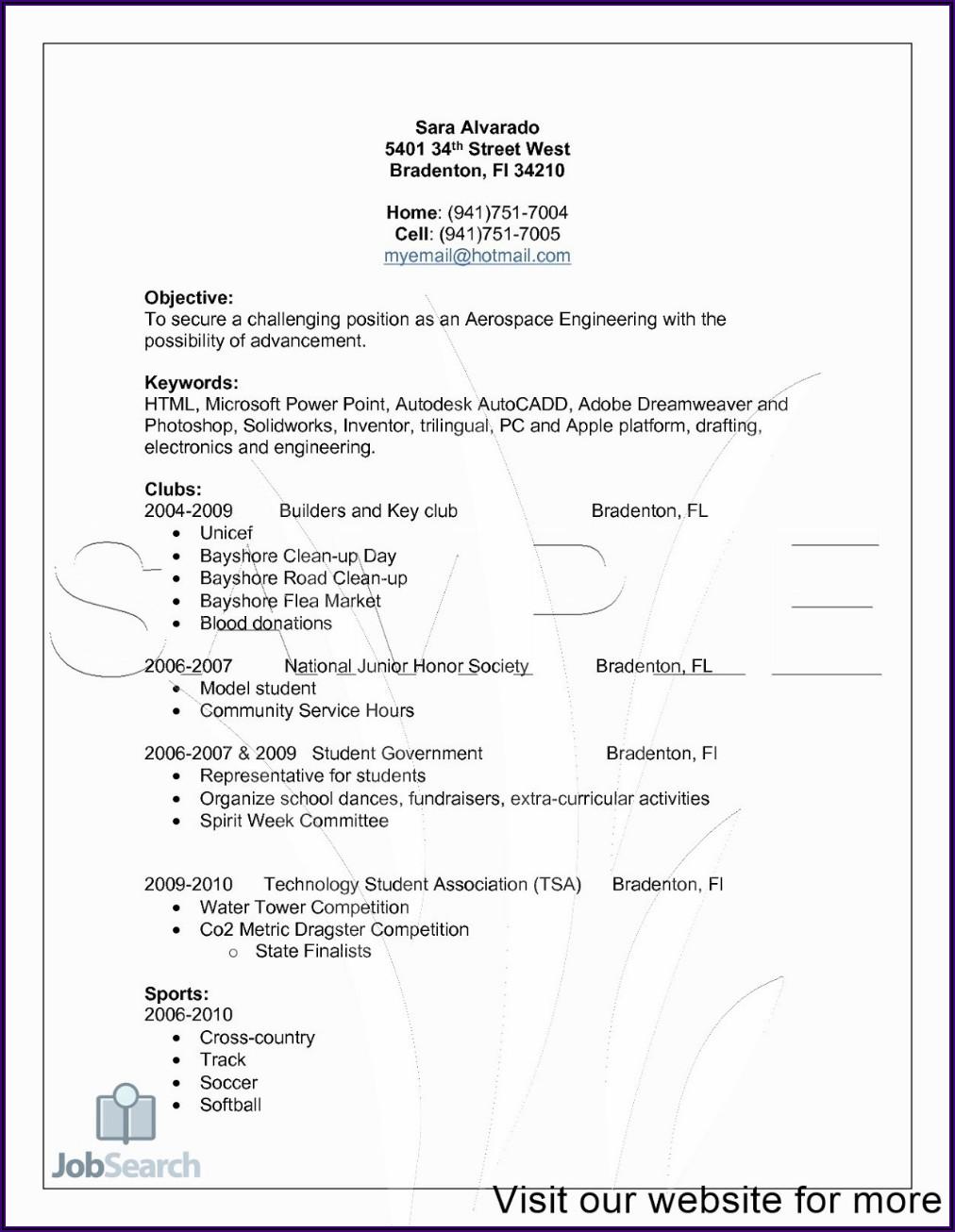 Professional Registered Nurse Resume Template