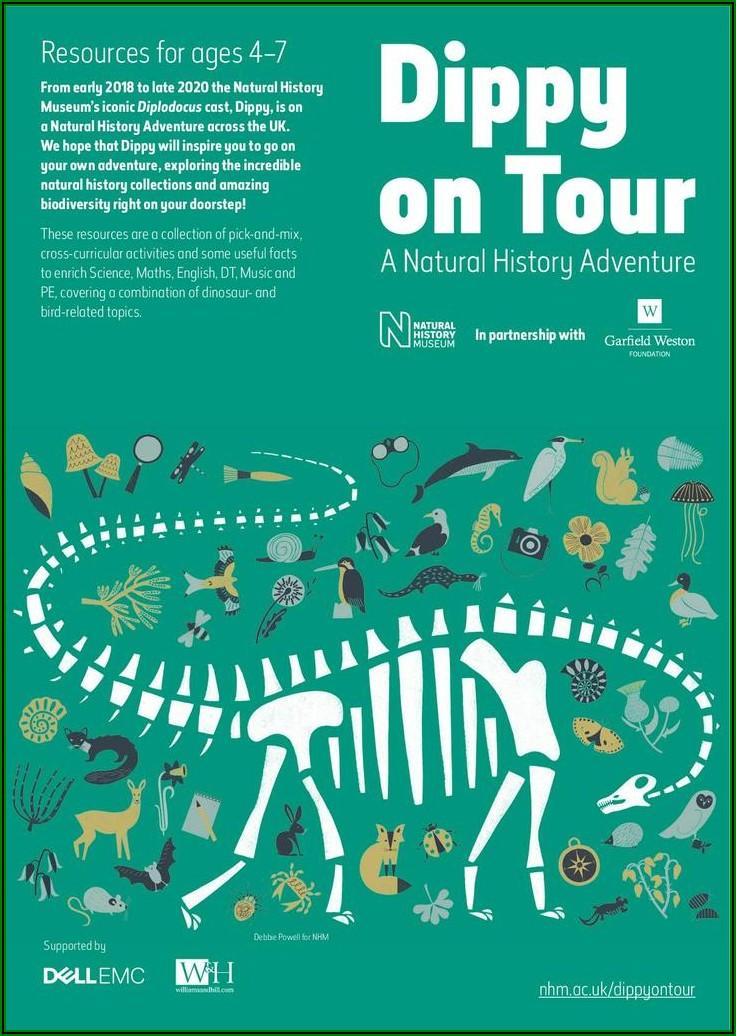 Dinosaur Timeline Lesson Ks1