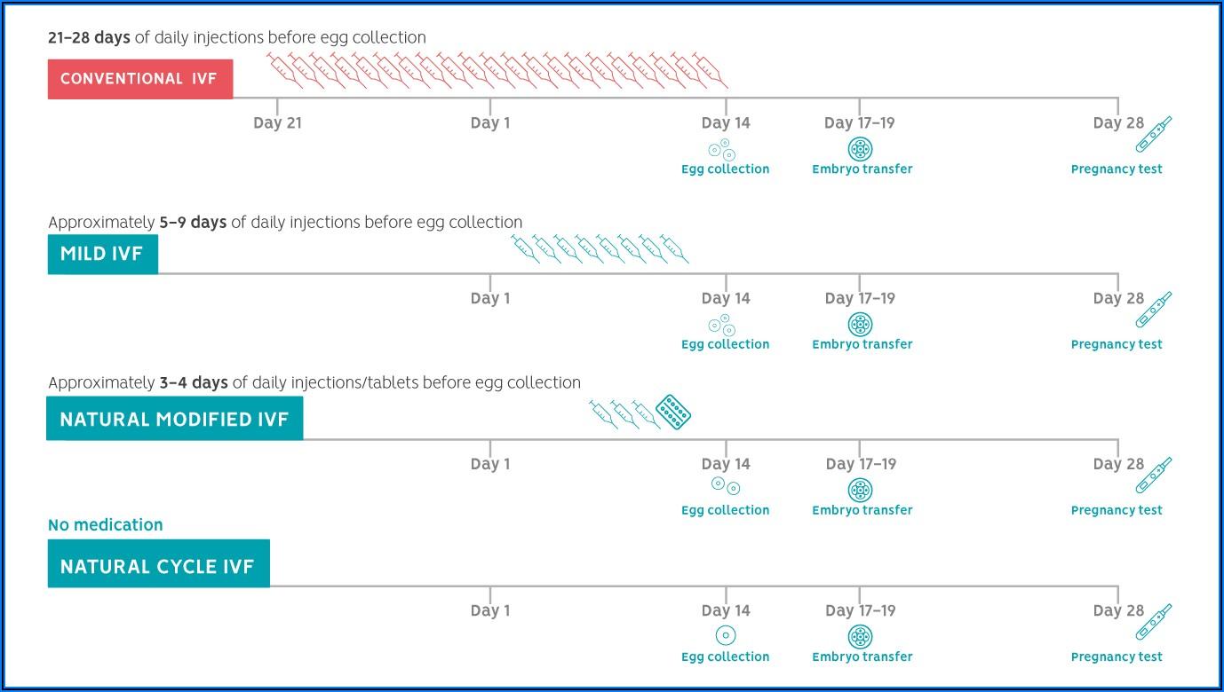 Ivf Frozen Cycle Timeline Uk