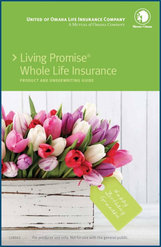 United Of Omaha Living Promise Brochure