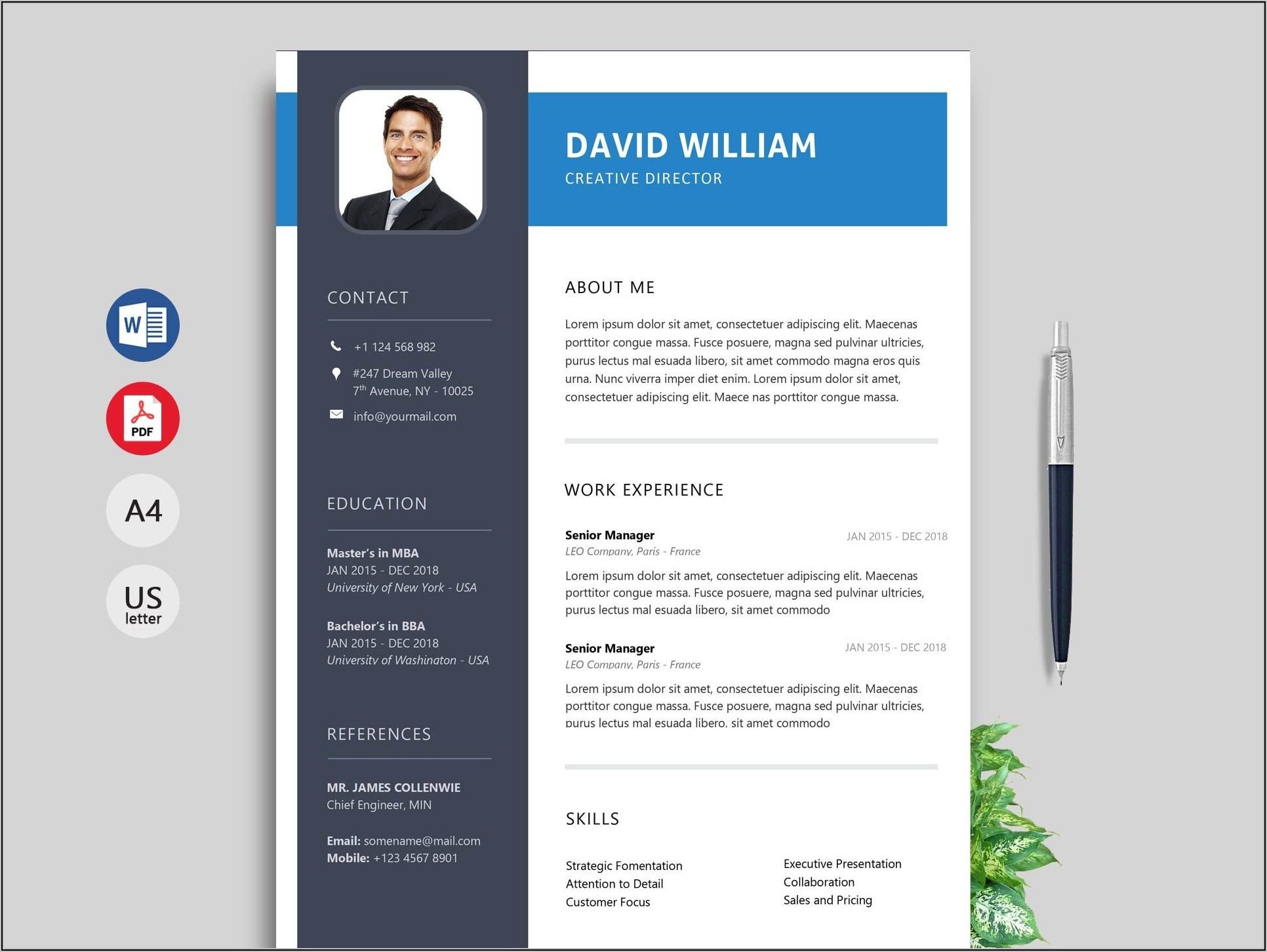 Academic Cv Template Word Free Download 2020