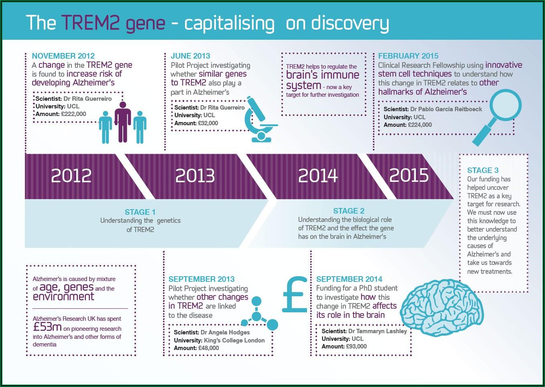 Alzheimer's Progression Stages Timeline