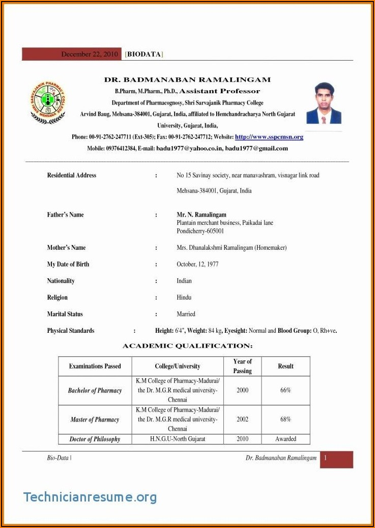 Cv Format In Word For Freshers Free Download