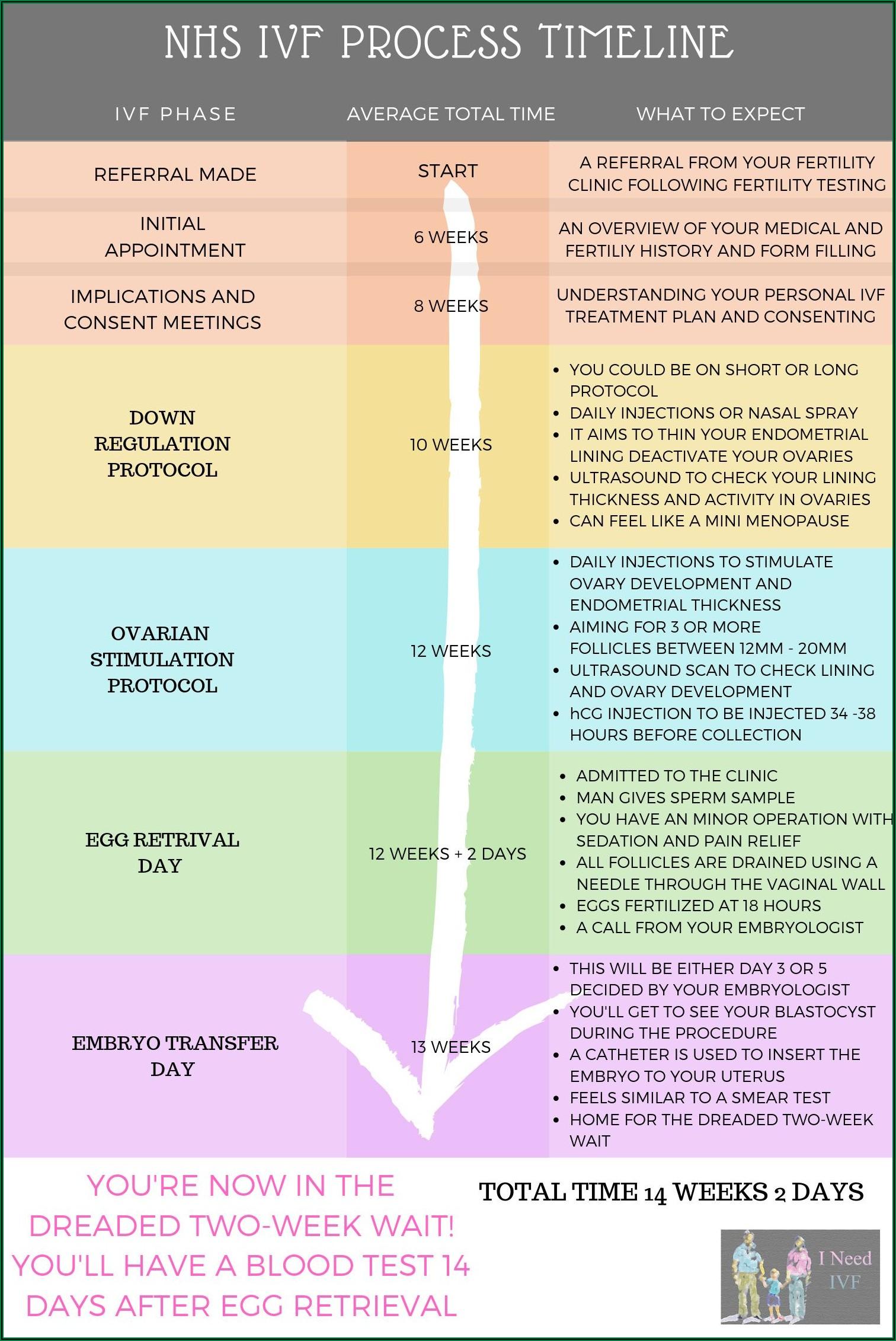 Ivf Process Timeline Uk