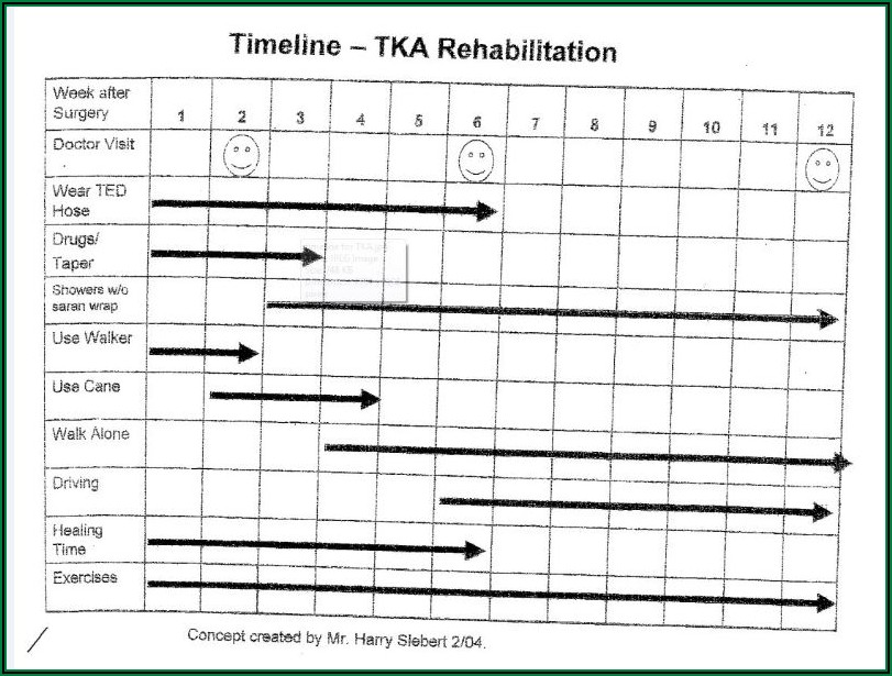 Knee Replacement Healing Timeline