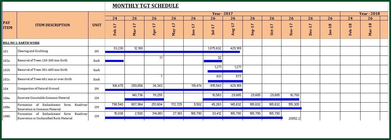 Ms Project Gantt Chart Timeline