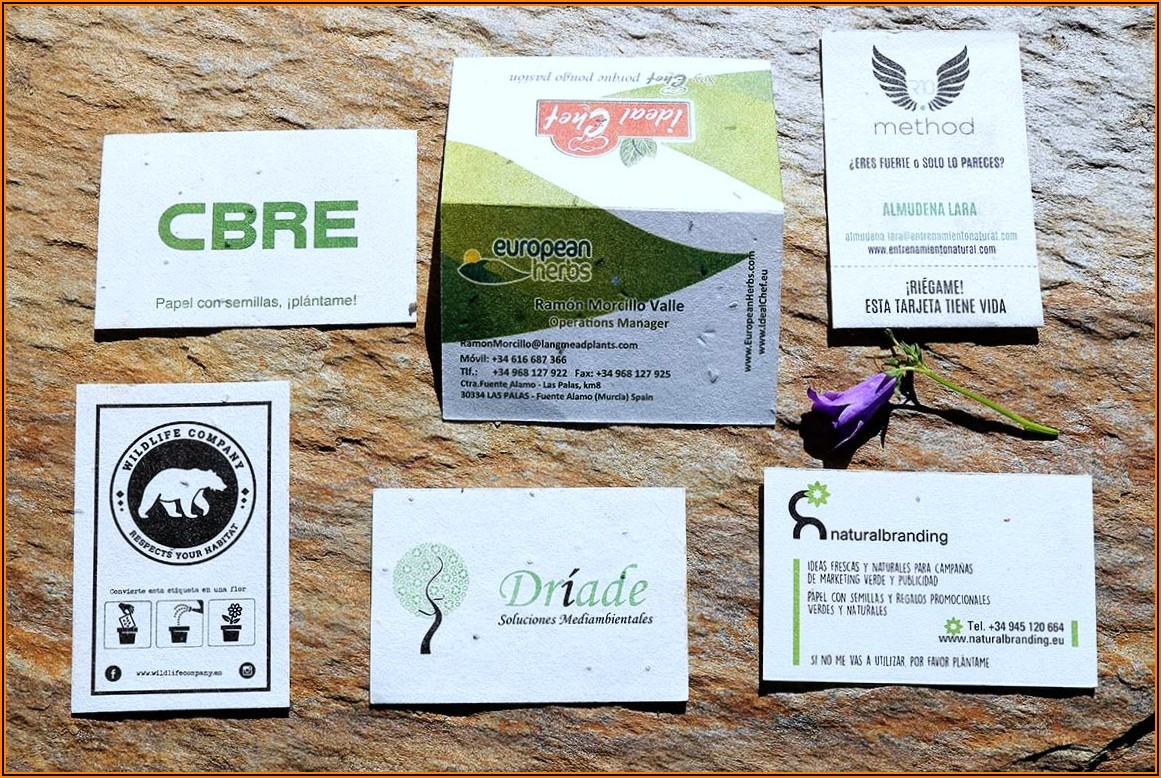 Seed Paper Business Cards Nz
