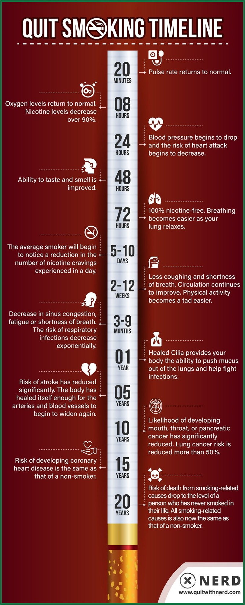 Smoking Quit Benefits Timeline