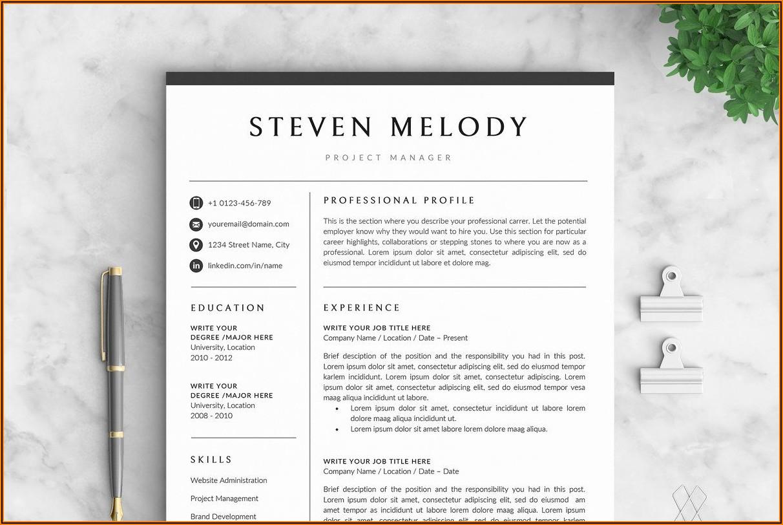 Template Cv Microsoft Word 2007