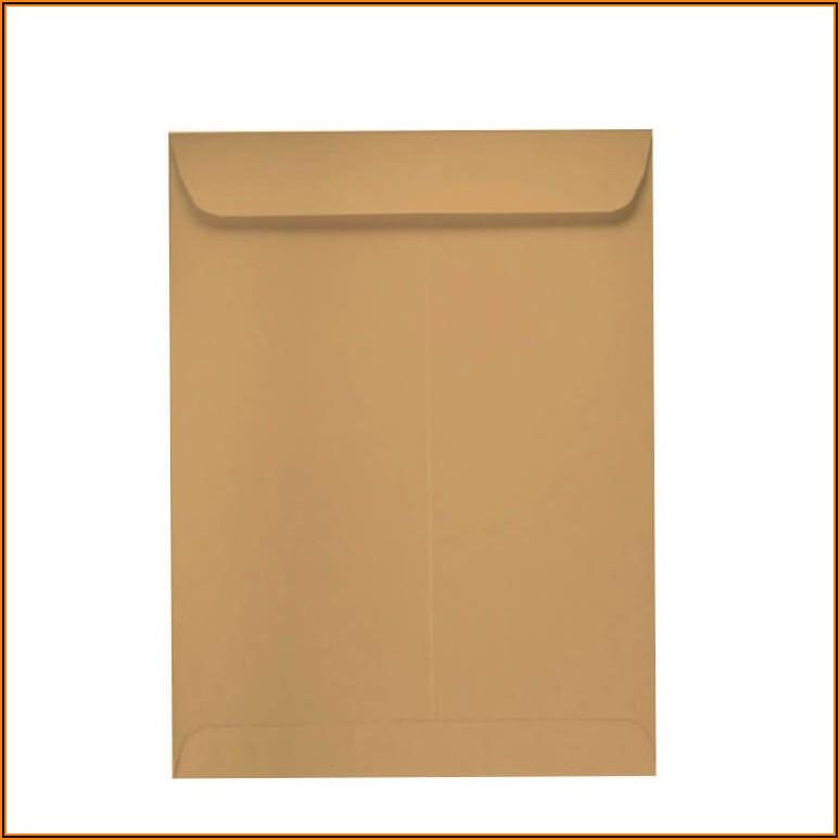 6 X 9 Catalog Envelopes