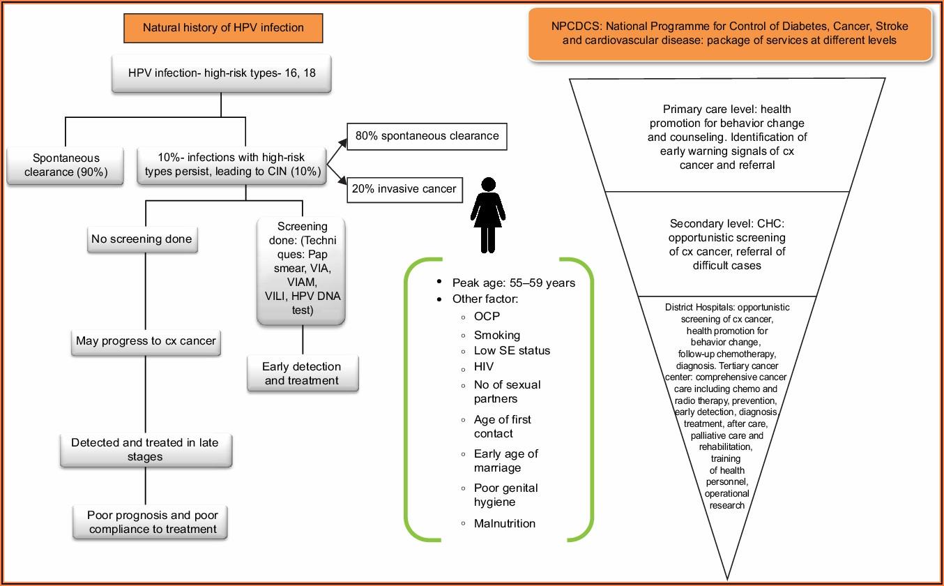 Cervical Cancer Treatment History