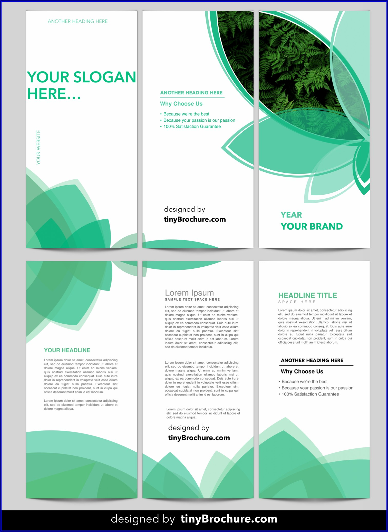 Download A Brochure Template For Microsoft Word