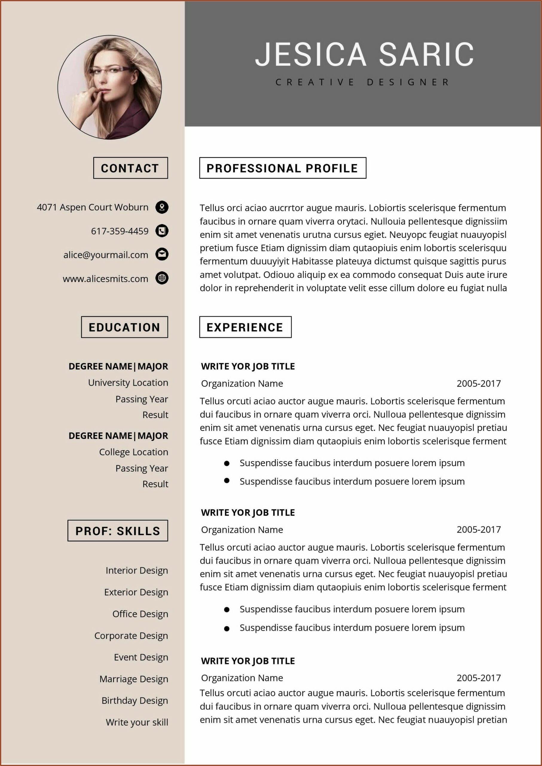 Functional Resume Template Word Free
