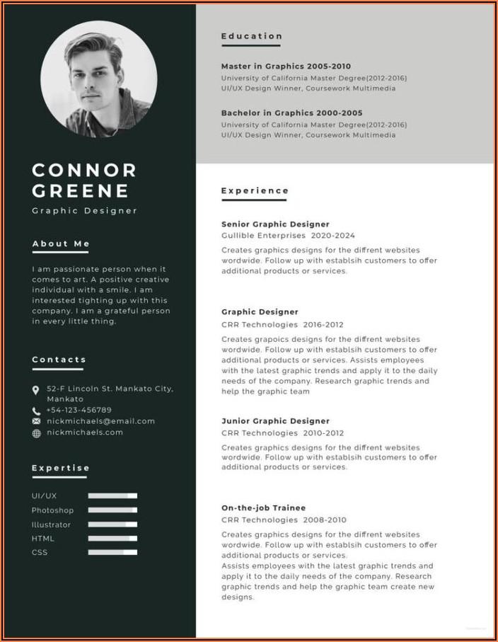 Graphic Designer Resume Sample Word Format Free Download