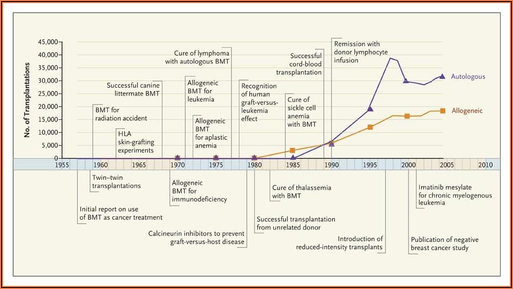 Post Bone Marrow Transplant Timeline