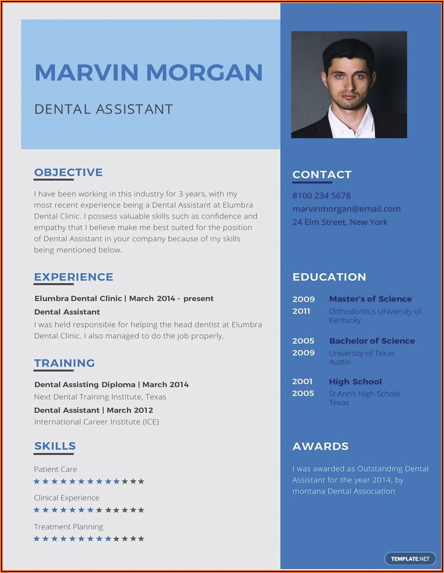 Resume Format For Bank Job In Word File Free Download