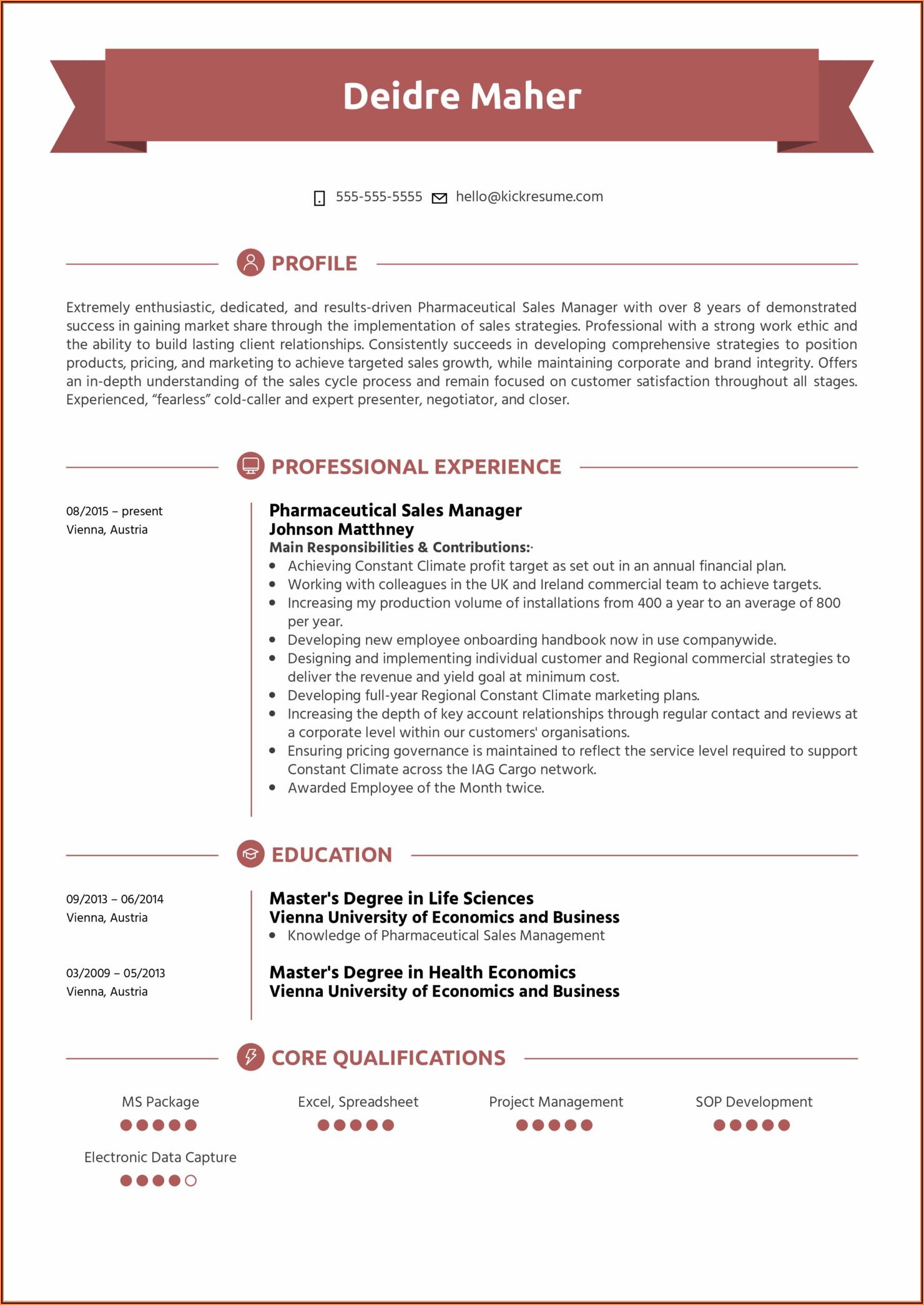 Sales Manager Cv Format