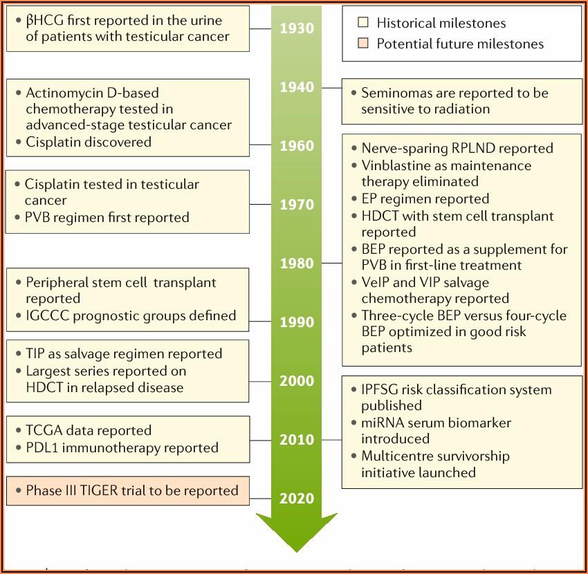 Testicular Cancer Treatment History