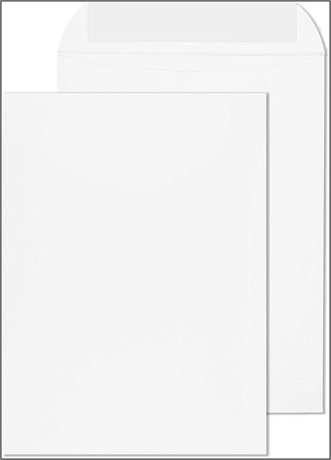 9x12 Double Window Catalog Envelope