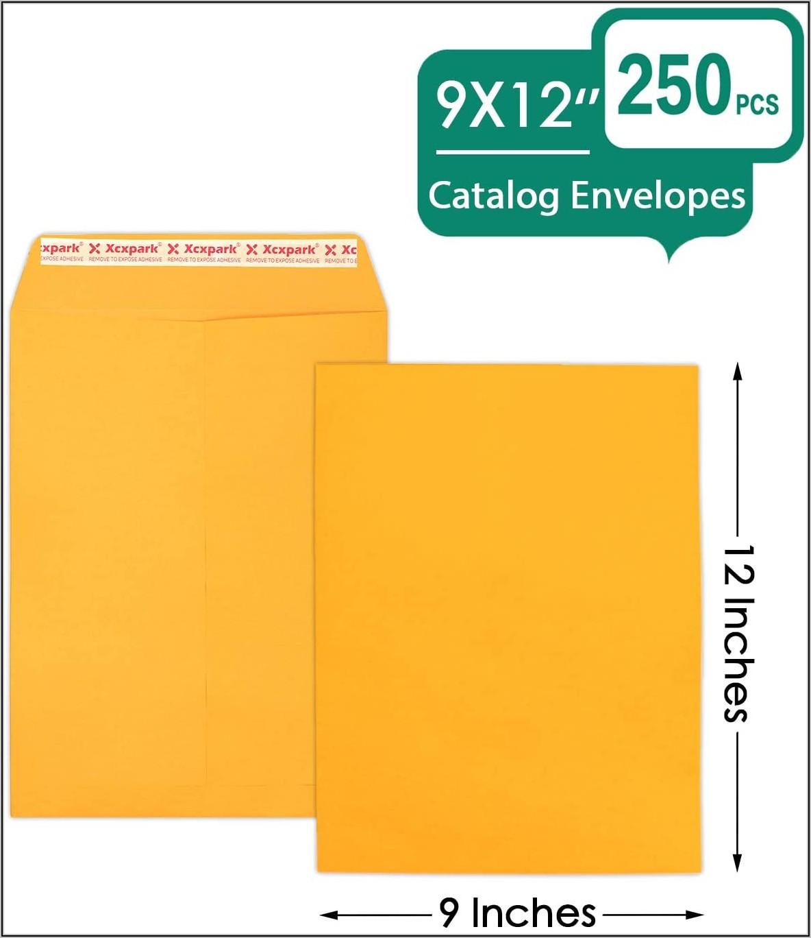 9x12 Self Seal Envelopes