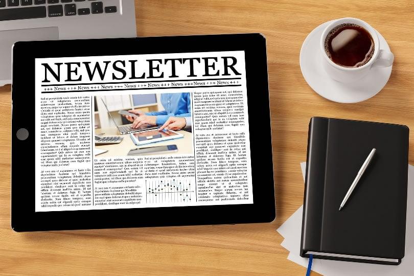 Writing A Newsletter