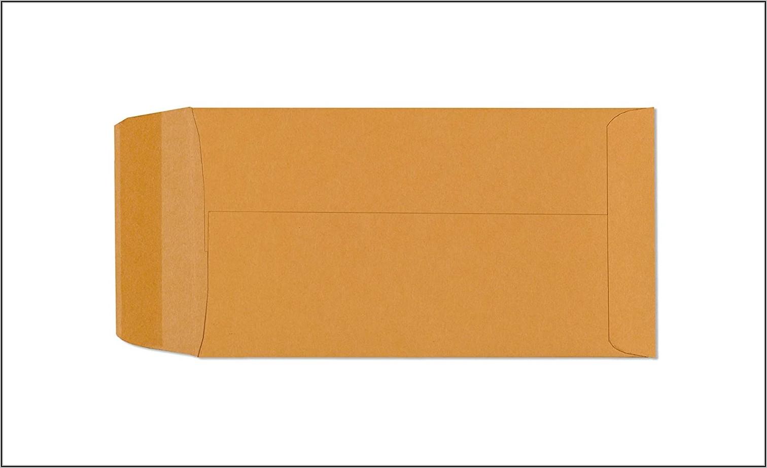 Brown Envelopes 3 12 X 6 12