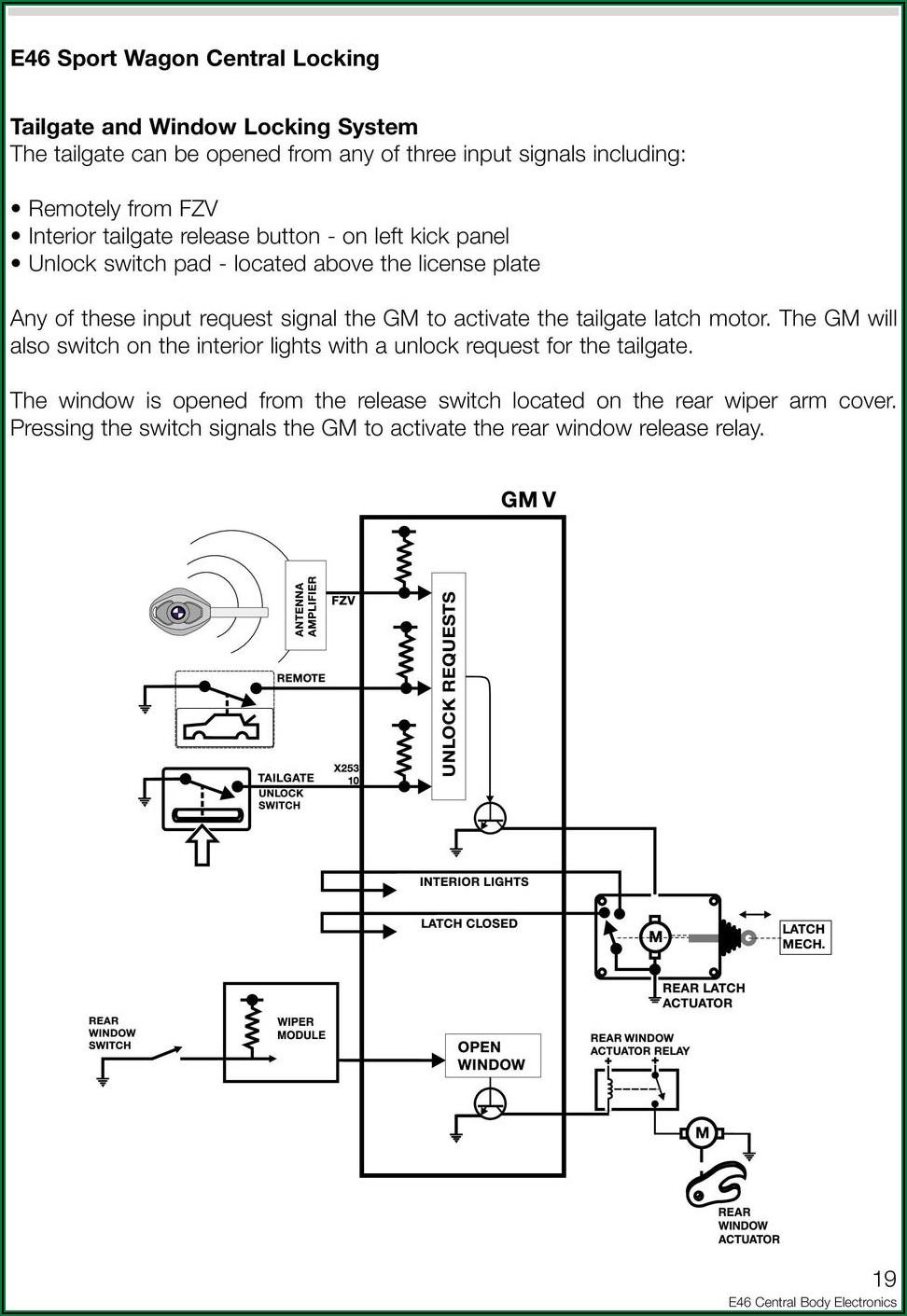 Electric Guitar Wiring Diagram One Pickup