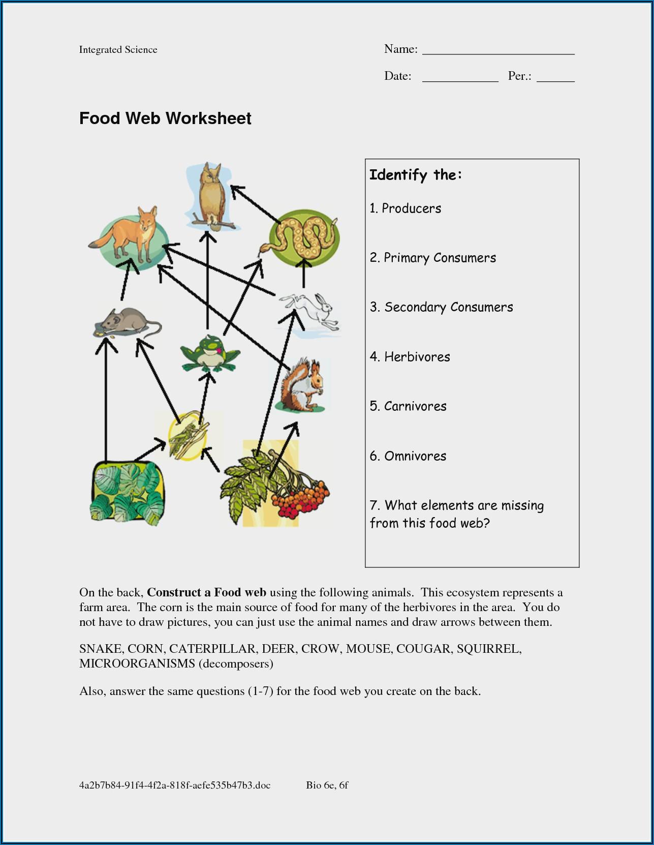 Food Chain Worksheet Year 2