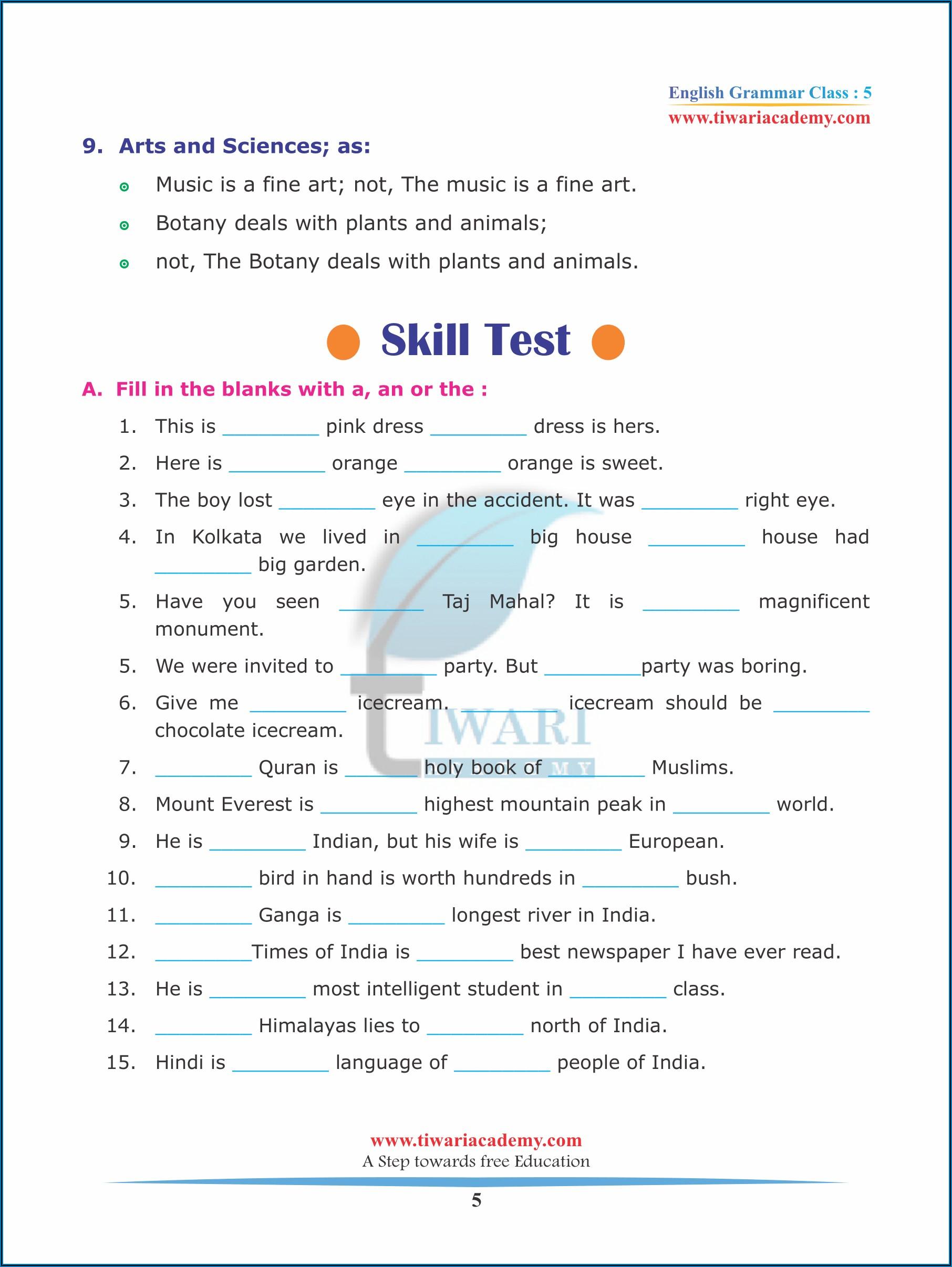 Grade 5 English Grammar Worksheets On Articles