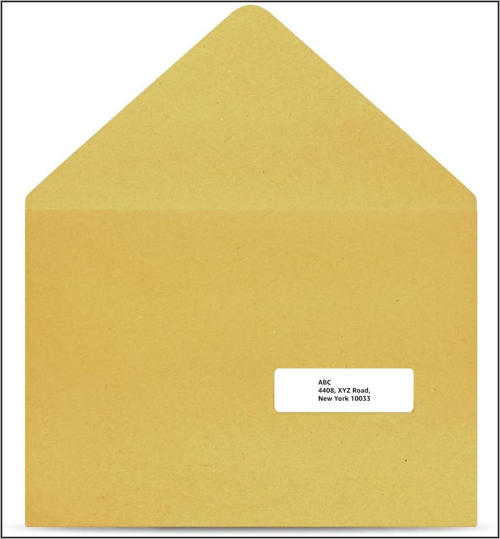 Sam's Club Clasp Envelopes
