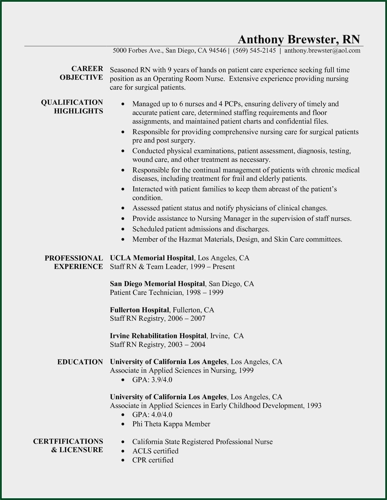 Curriculum Vitae For Nursing Assistant