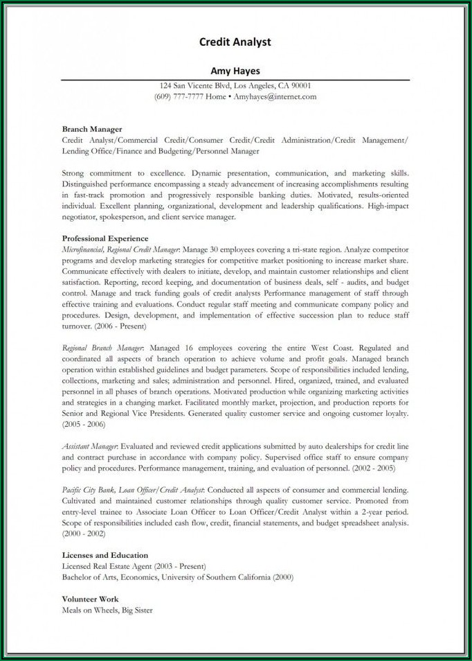 Examples Of Professional Business Resumes