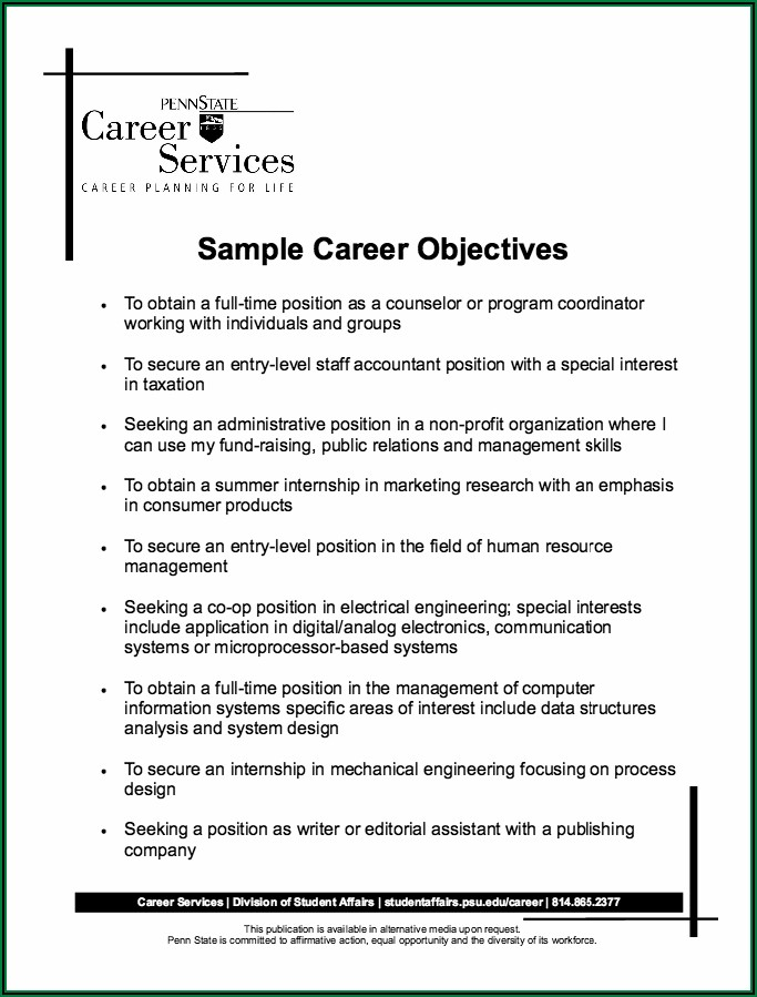 Examples Of Professional Objectives For Resumes