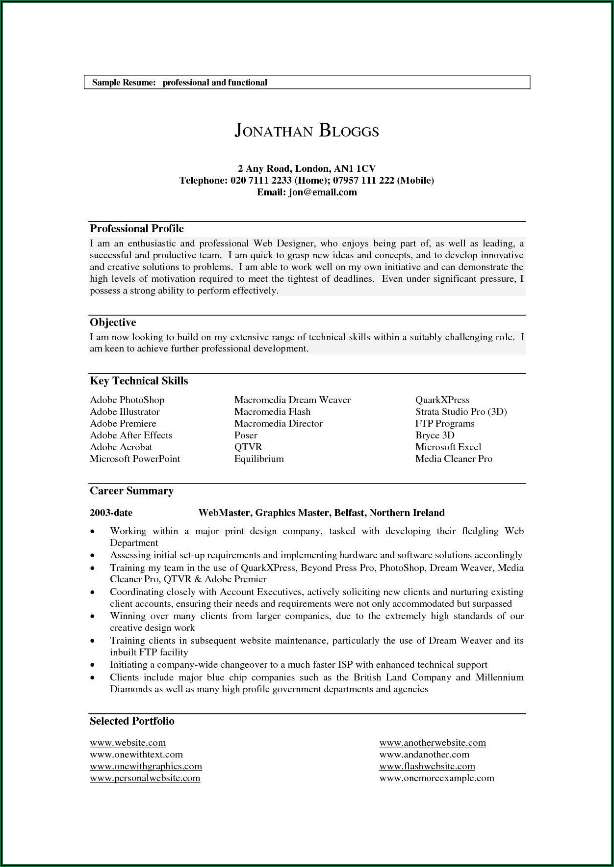 Examples Of Professional Profiles For Cv