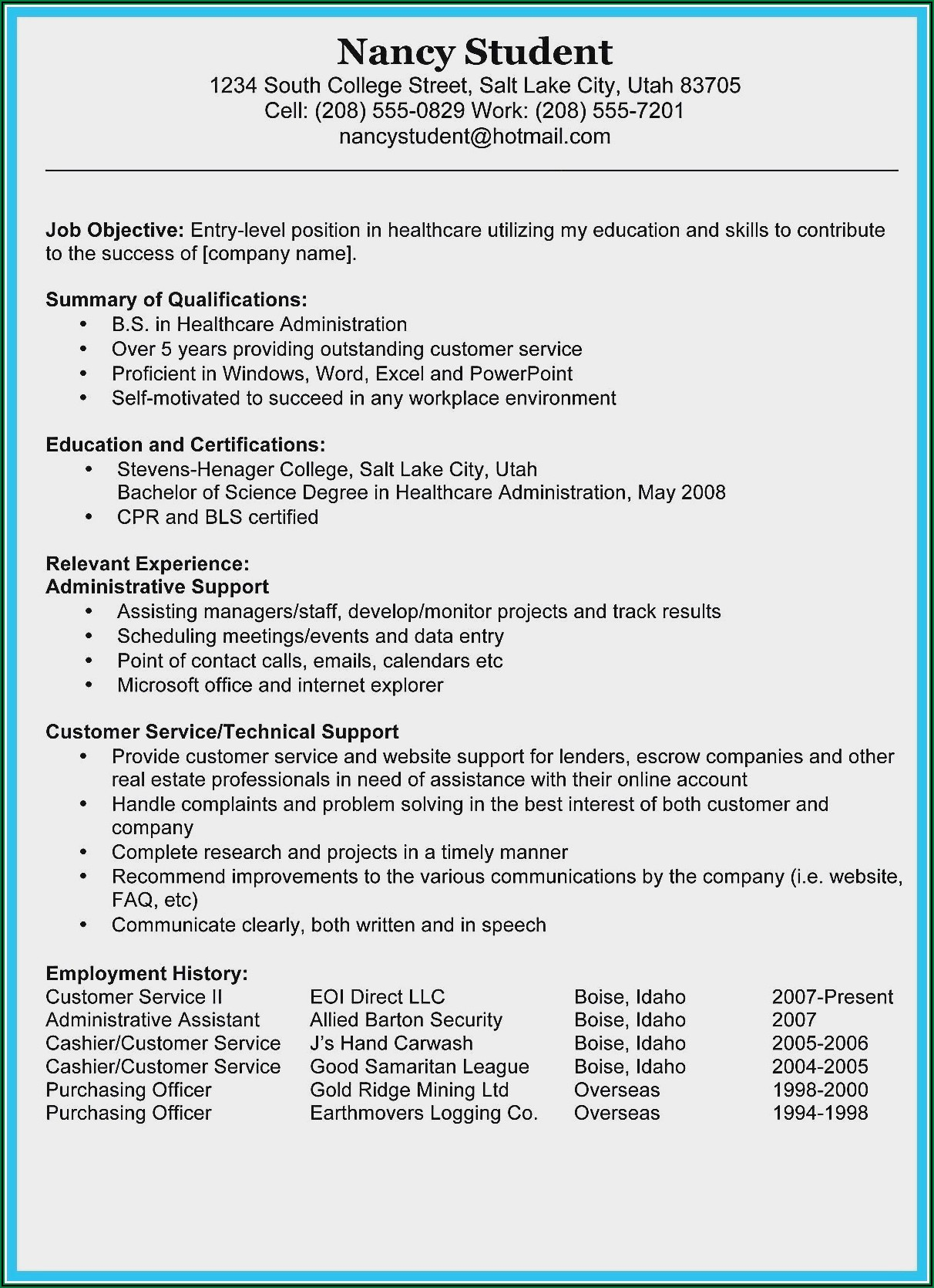 Examples Of Professional Summaries For Resumes