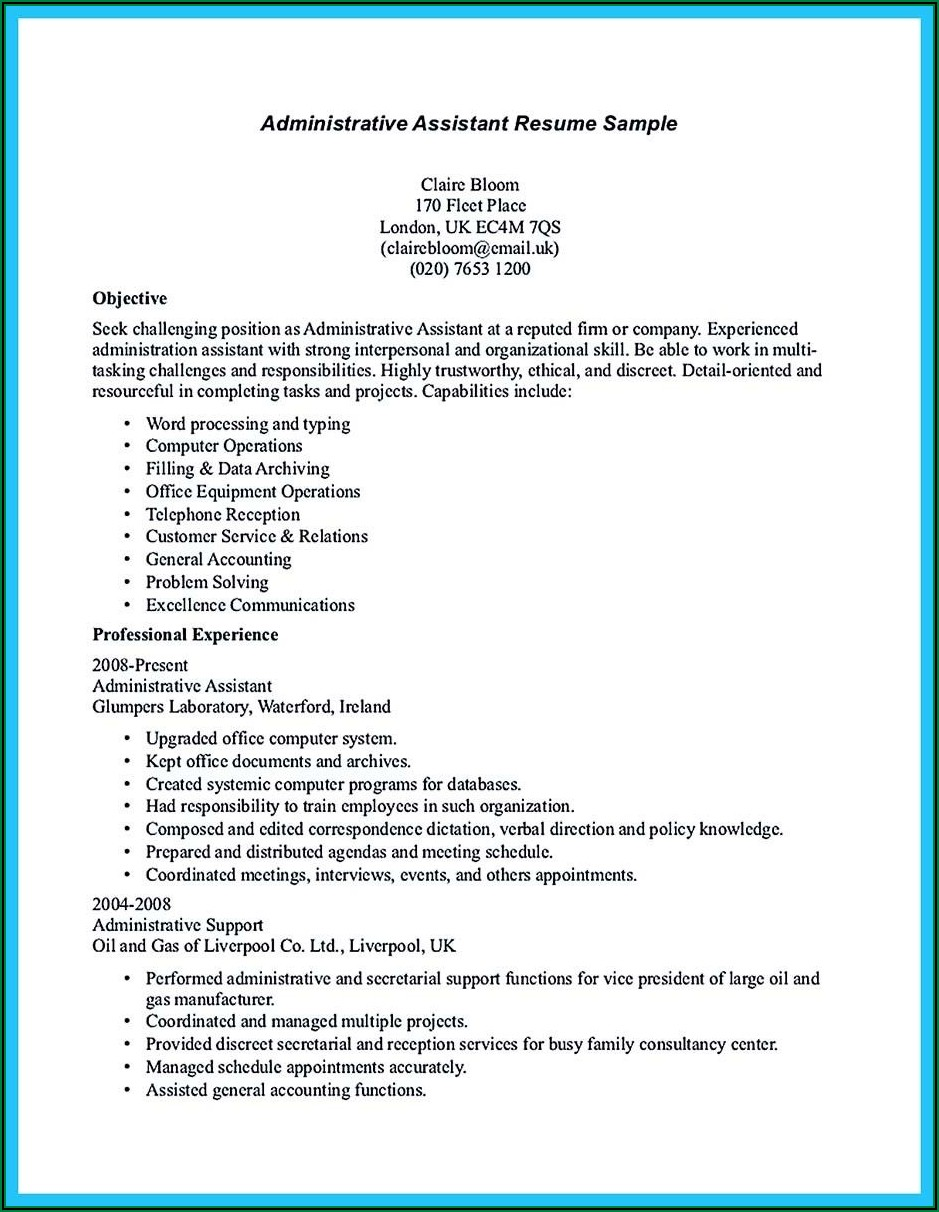 Sample Of Professional Summary For Resume